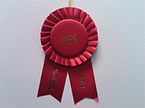 AES Award granted to our poster describing a unique Spanish neuropsychology battery of tests
