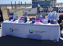 NEREG epilepsy information booth on the shore