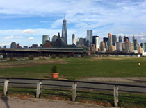 View of NYC from our 2015 epilepsy walk