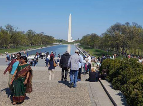 Beautiful DC hosted our epilepsy walk
