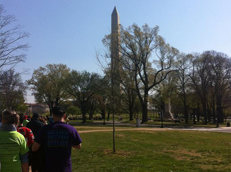 Beautiful DC sites for epilepsy walk