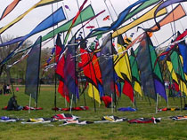 The kite festival gave walkers something nice to look at