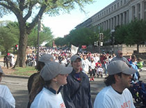 Hundreds at the 2013 national Epilepsy walk