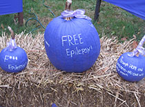 Purple Pumpkins for epilepsy awareness
